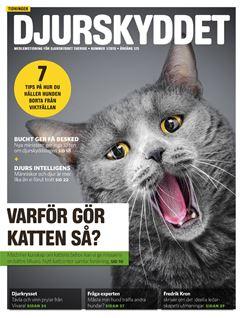 Bild på Tidningen Djurskyddet