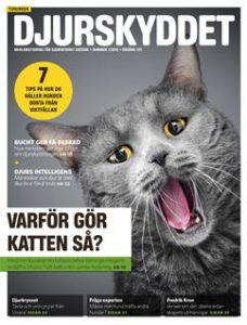 Tidningen Djurskyddet med en bild på en katt på framsidan