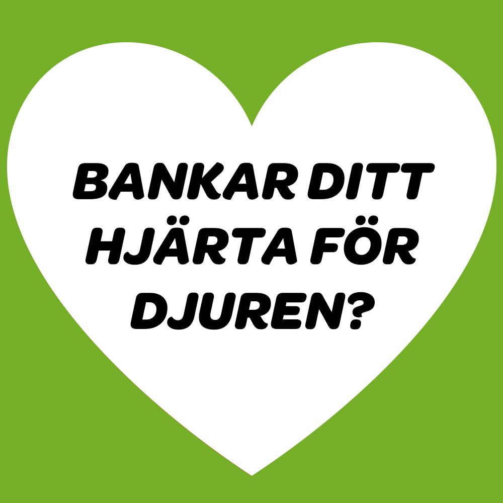 """Hjärta med texten """"Bankar ditt hjärta för djuren?"""""""