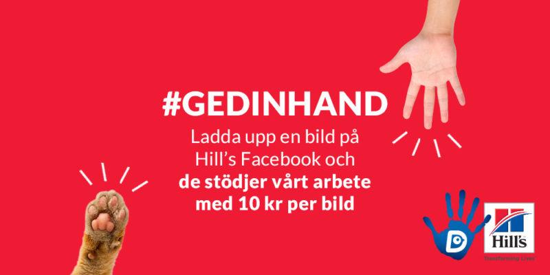"""Text: """"#gedinhand Ladda upp din bild på Hill's Facebook och de stöder Djurskyddet med 10 kr per bild"""""""
